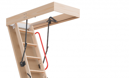 P30 Attic Ladder