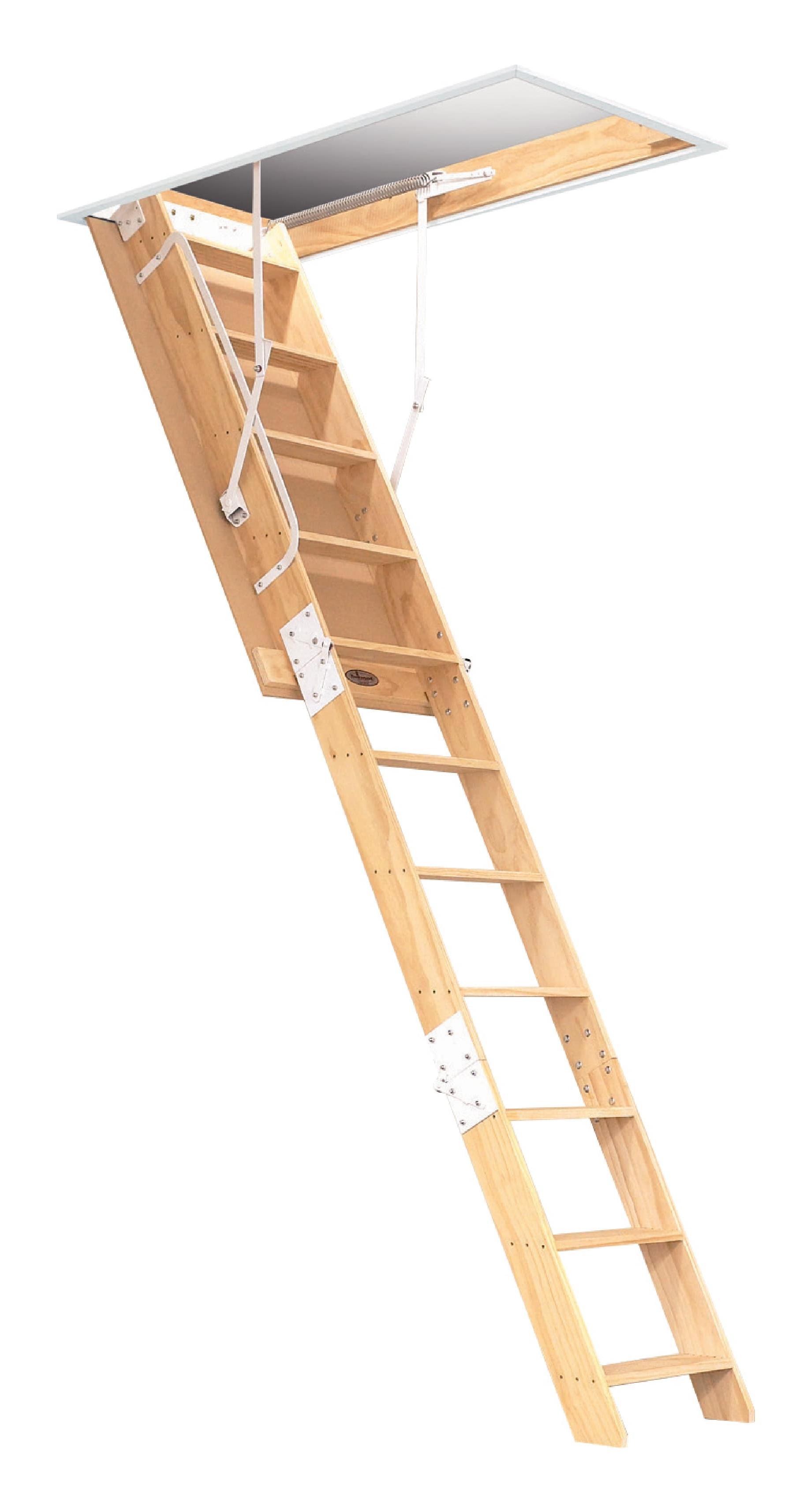Ceiling Ladders Nz Taraba Home Review